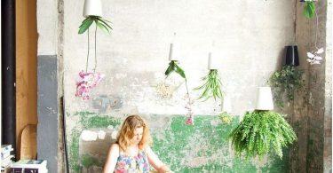 cvety-kotorye-rastut-iz-potolka-botanicheskie