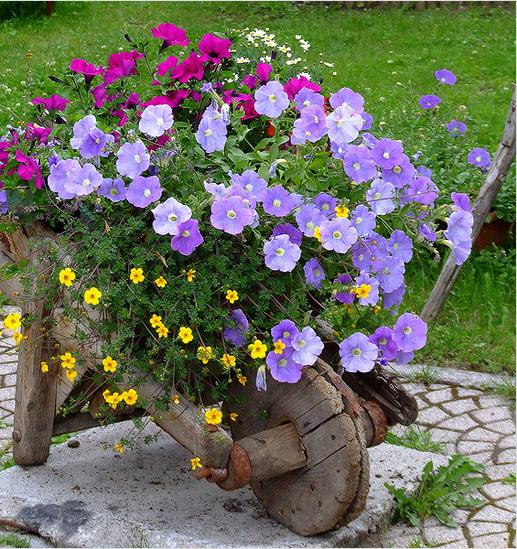 flower-garden12