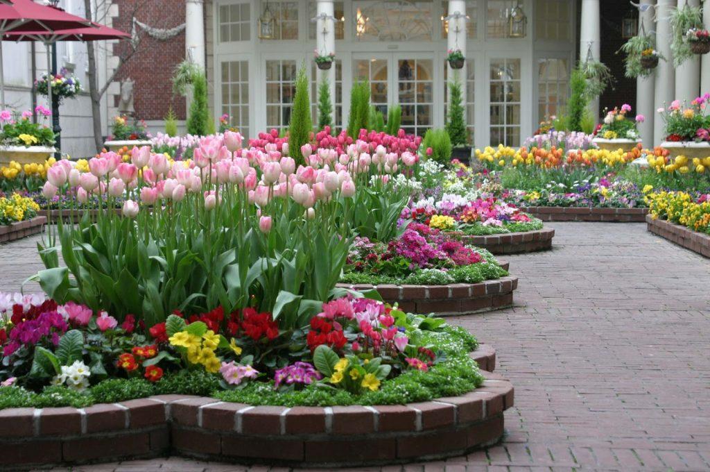 flower-garden17