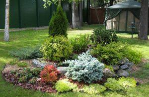 mini-garden-19-300x225