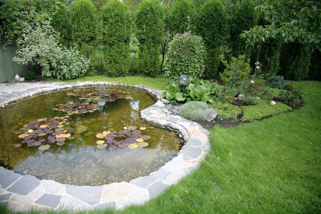 pond-with-stones-666