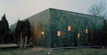 slitsja-s-prirodoj-dom-v-zelenom-kamufljazhe