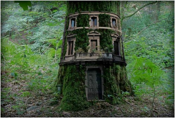 19 невероятна Treehouse от цял свят