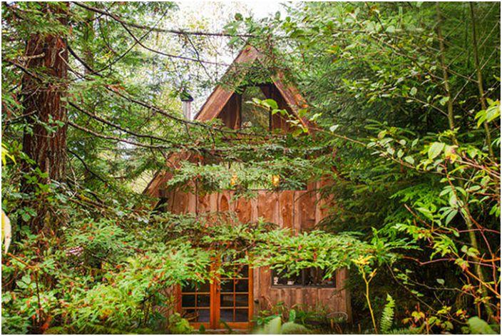 Вдъхновен от японската естетика: къща в горската площ от само 20 квадратни метра. м