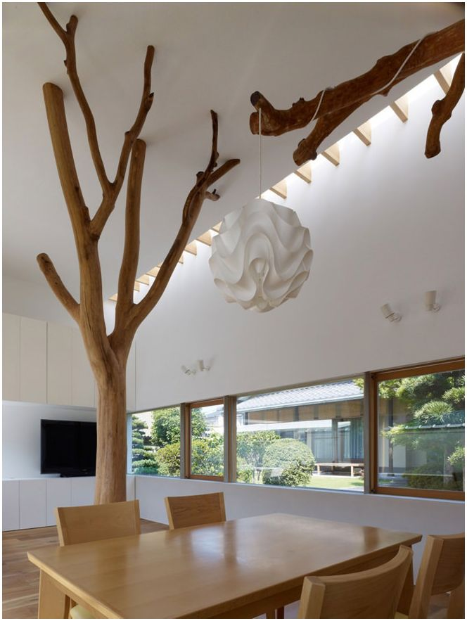 trees inside the house