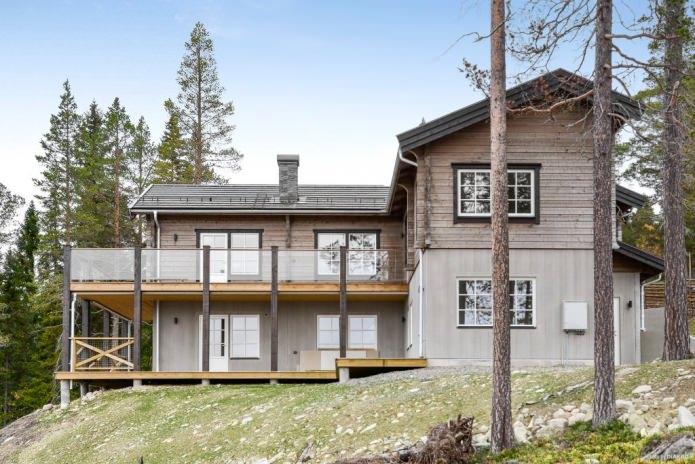 Селски къщи в скандинавски стил: функции, снимки