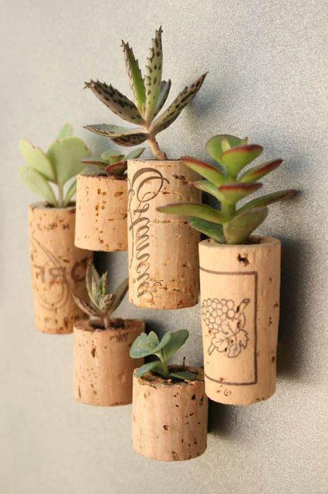10 страхотни идеи за декорация на стените на жилищни растения