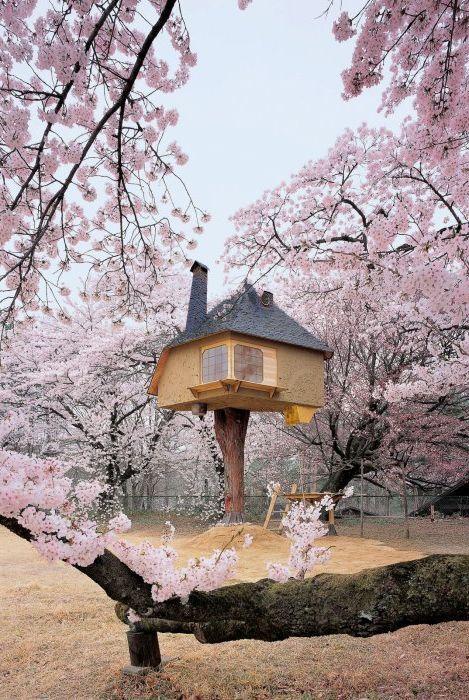 15 най-невероятни екологичен и удобен Treehouse