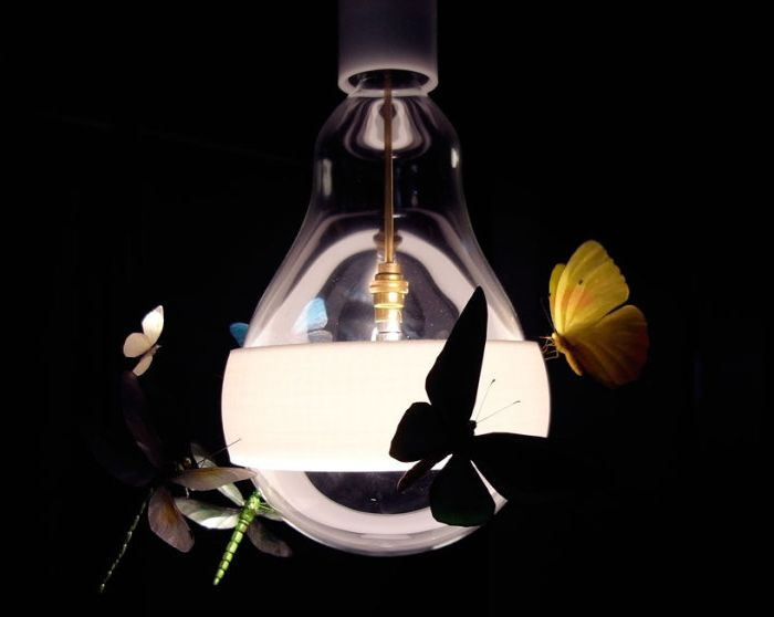 Butterflies, moths and dragonflies surrounded by a light bulb.