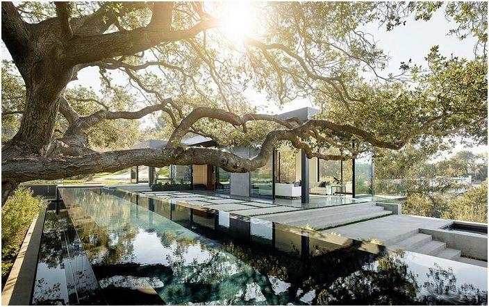 Под свода на вековни дъбови дървета: огромно имение, умело крие истинските си размери