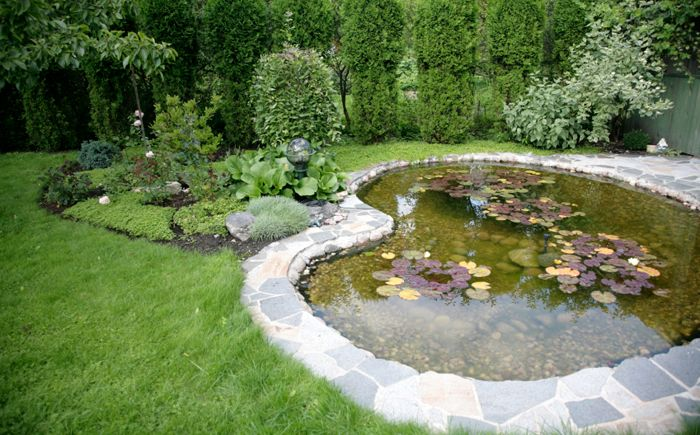 The large pond in the back yard paved with slabs that form the patio.