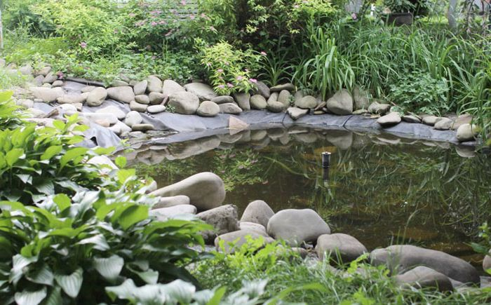 Small pond in the garden with a fountain