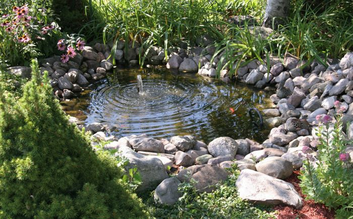 A small pond with fountain