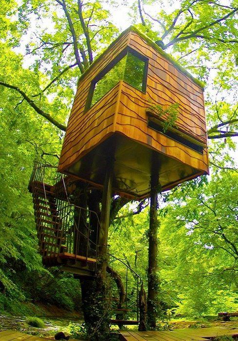 Вдъхновение и точно изчисляване на 6 къщи по дърветата, проектирана от архитектите