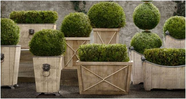Garden- flowerpots- best-ideas-10