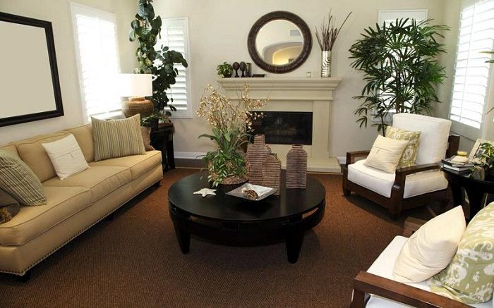 Divide the space into a tiny living room possible with indoor plants.