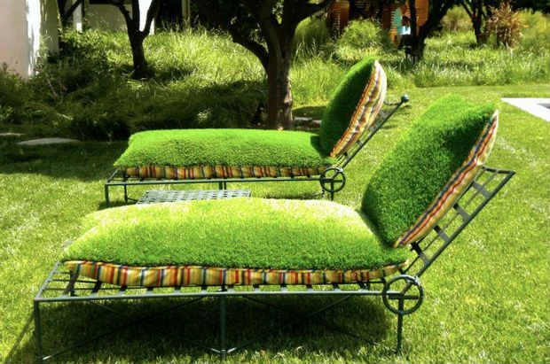 Bright coating items for the garden of moss