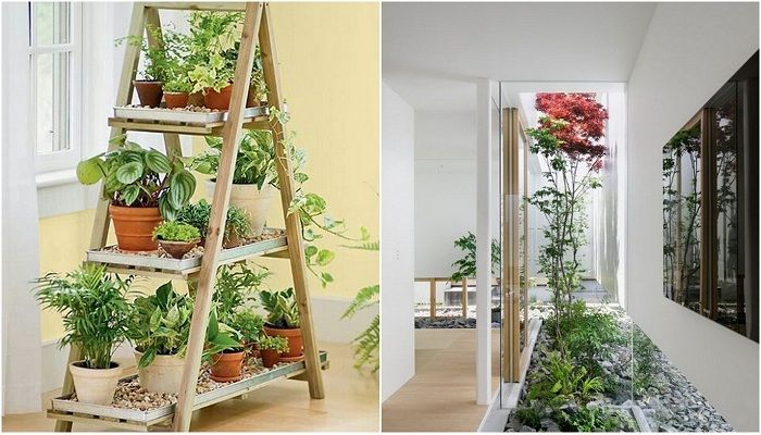 The original house indoor gardens that will inspire.