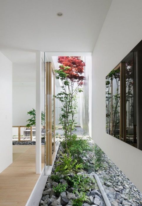 Godsend for any home would be just a great transformation of the interior by placing a mini-garden.