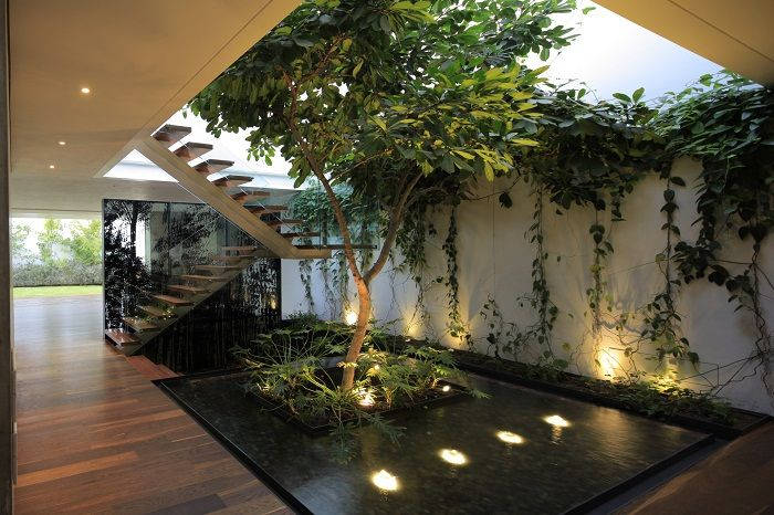 Interesting and very nice design house with the help of a mini-garden.