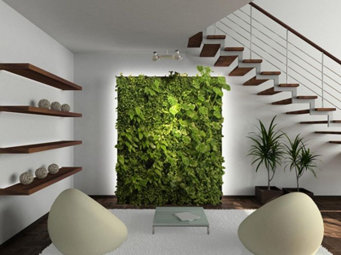 Excellent choice to equip the interior of a room by creating a mini-garden.