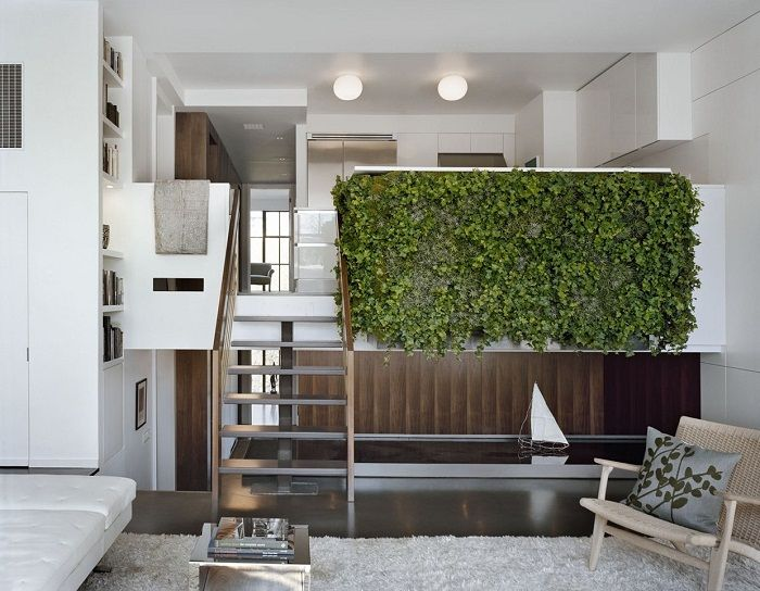 Pretty option to create a beautiful green wall that will like and exactly inspire.