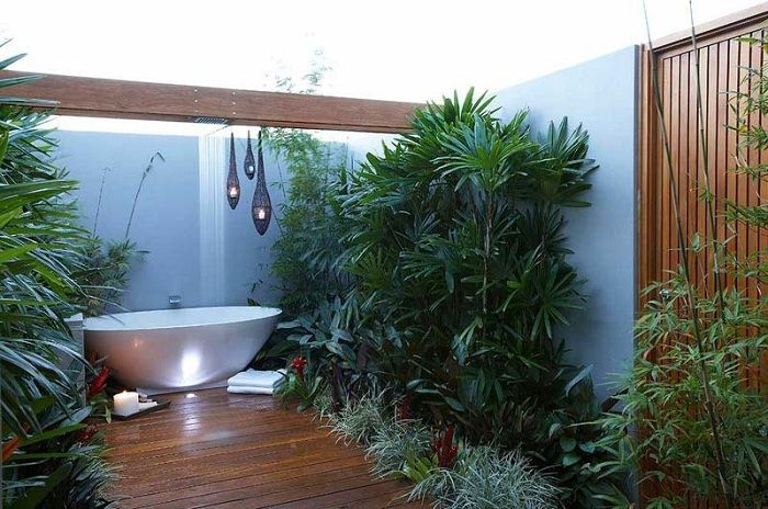 Very cool and unusual decision to place a mini-garden in the bathroom that looks memorable.