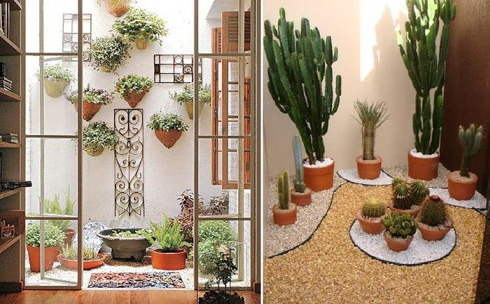 Simple and very elegant solution to transform the interior of the room with the help of a mini-gardens.