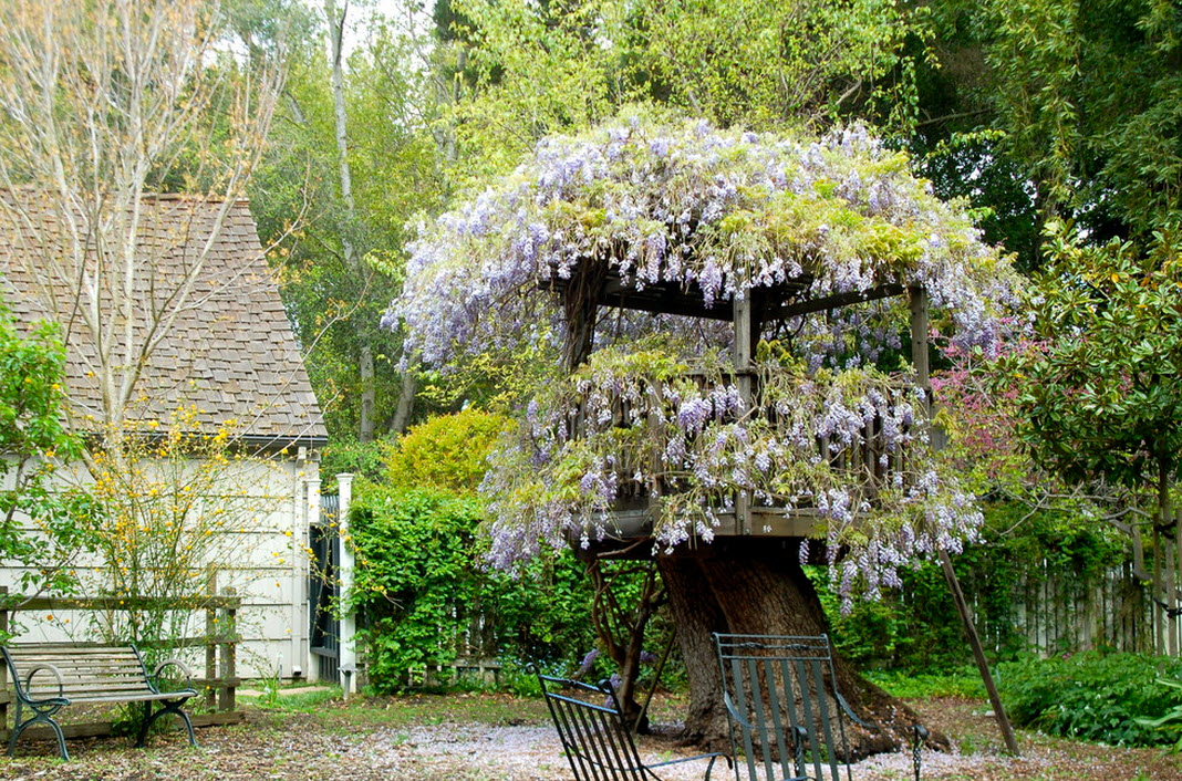 Tree house in flowers
